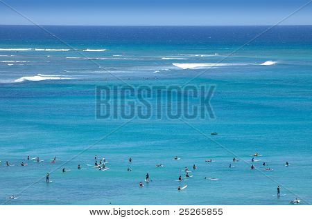 Surfers Tropical Beach Paradise