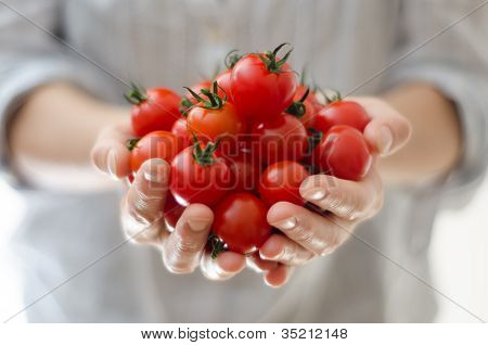 Cherry Tomatoes In Womans Hands