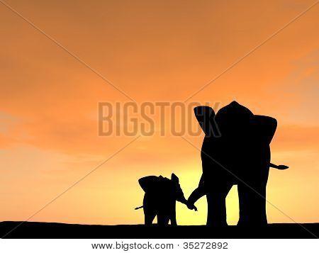 Elephant Parent