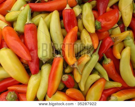 Hot Peppers Of A Varity Of Colors