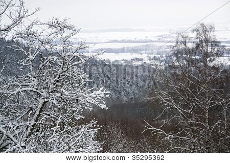 Winter Scenery In Hohenlohe