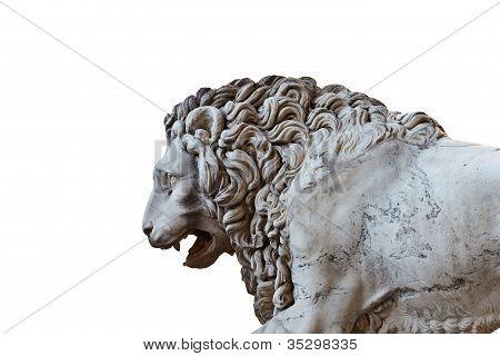 Llion Near Palazzo Vecchio