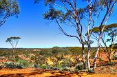 stock photo of earth structure  - The Red earth of the Kalgoorlie landscape Western Australia - JPG