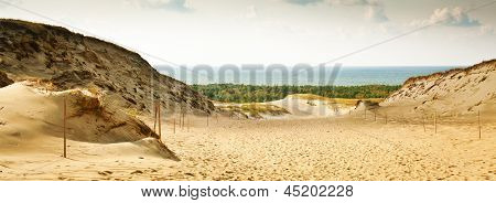 Panoramic View Of The Grey Dunes At The Curonian Spit