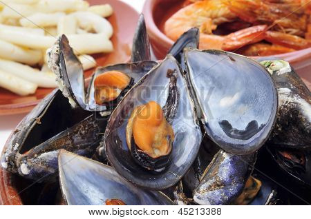 closeup of some seafood spanish tapas, such as mejillones al vapor (steamed mussels), gambas al ajillo (shrimps with garlic) or calamares (squid)
