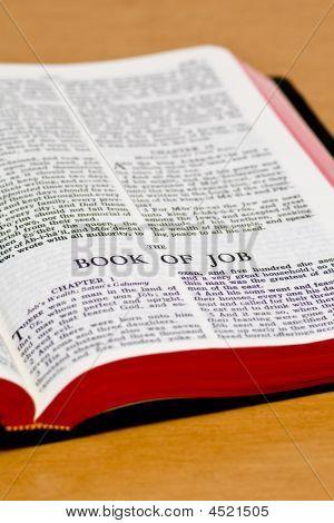 Bible Page - Job