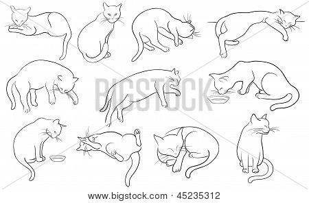 Vector illustration of Cats Silhouette set