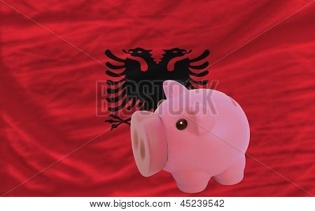 Piggy Rich Bank And  National Flag Of Albania