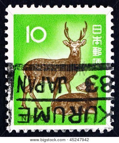 Postage Stamp Japan 1972 Sika Deer, Cervus Nippon