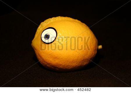 Lemon Blowfish