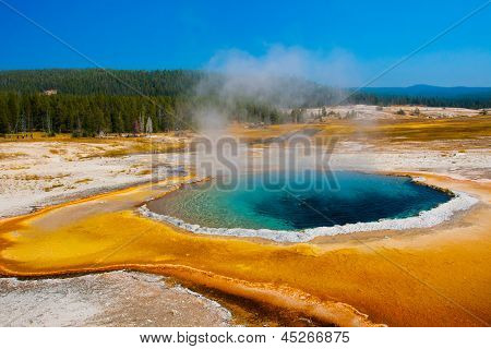 The Blue Star Pool in Yellowstone National Park,USA