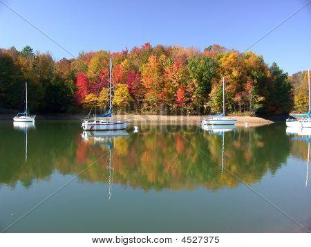 Fall In Alum Creek