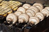 image of agaricus  - Cooking mushrooms  - JPG