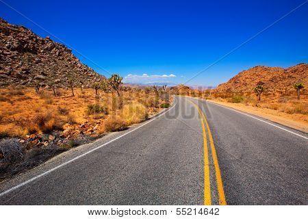 Joshua Tree boulevard Road in Yucca Valley desert California USA