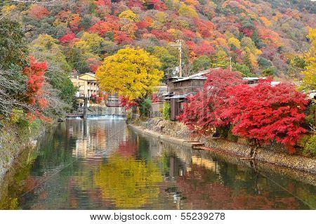 Kyoto Japan Arashiyama Autumn Color