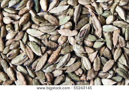 Green Cardamom Pods (or Cardamon)