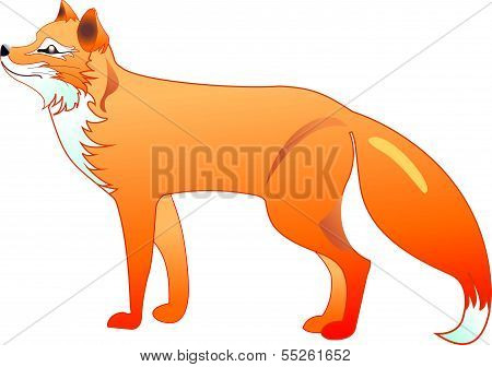 The silhouette of the red fox in a vector
