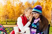 picture of 11 year old  - Two happy girls whispering 11 years old sitting on the bench in autumn park - JPG
