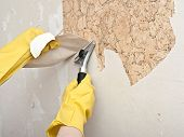 image of spreader  - Hand removing wallpaper from wall - JPG