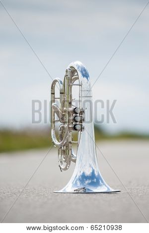 Portrait Of A Silver Baritone