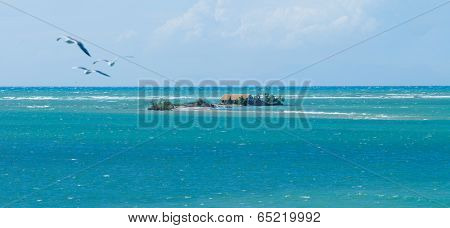 Santa Mavra area in Lefkas Greece with seagulls