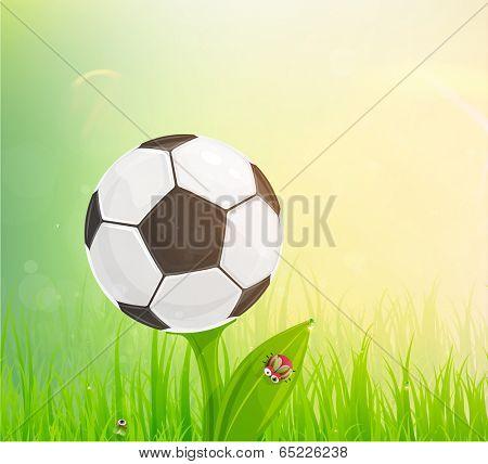 Brazil Summer 2014 Vector, Soccer Ball for Football Design. Ball Looks Like Flower. Grass with Dew.