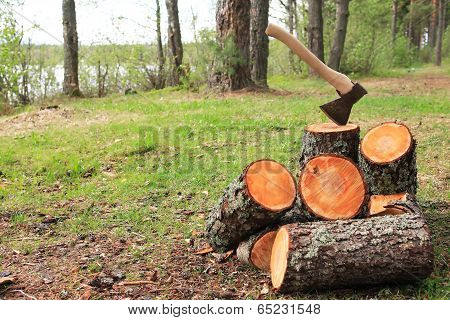 Firewood Splitting