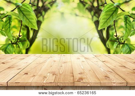 Empty wooden table in a sun drenched summer garden