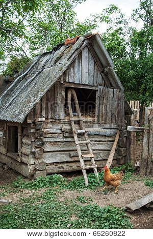 The hen and old hayloft