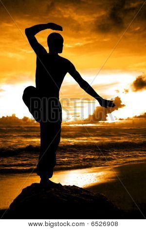 Martial Artist in Kung Fu stance With Orange Sunset
