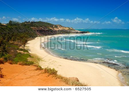 Beautiful Beach With Palm Trees At Praia Do Amor Brazil