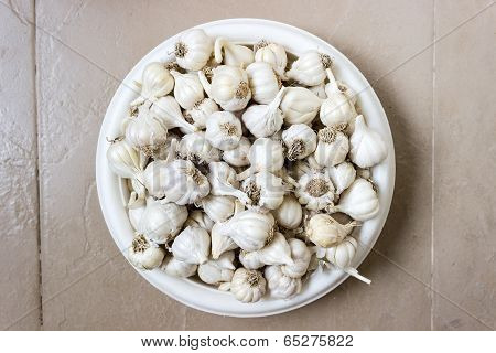 close up of garlic kept in a vessel an isolated background