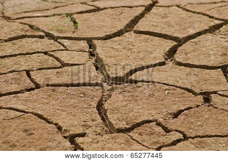 Cracked By The Heat Long Life Less Soil