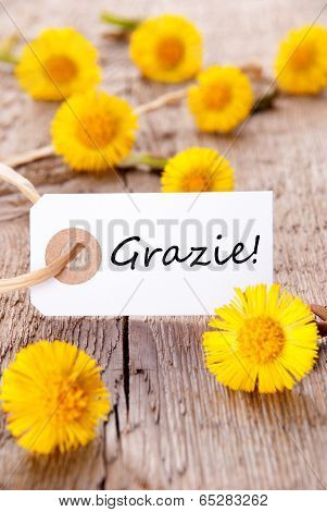 Yellow Flowers With Grazie