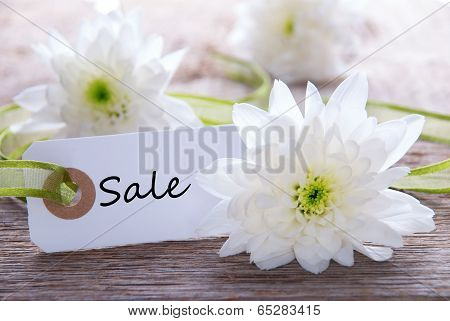 Flower Label With Sale