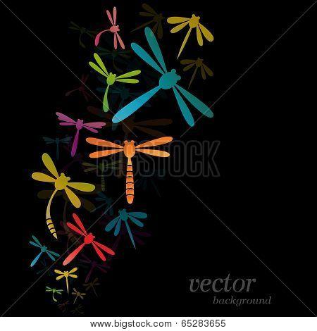 Dragonfly Design On Black Background