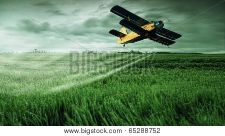 A crop dusting plane working over a field