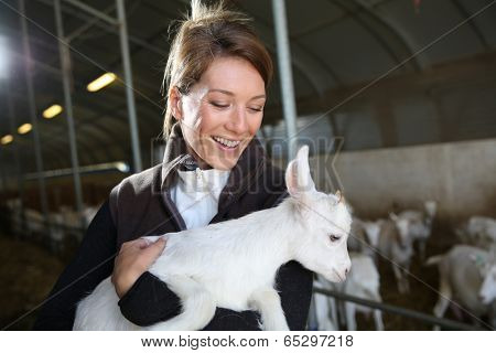 Cheerful farmer woman carrying baby goat in barn