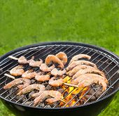 pic of barbie  - Delicious grilled prawns on burning coals - JPG