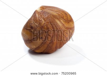 Single Hazelnut, Isolated On White Background