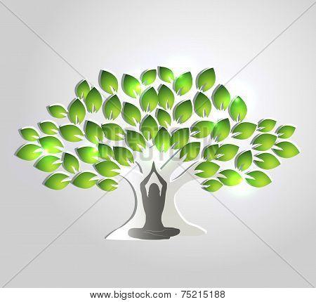 Yoga Meditation And Tree