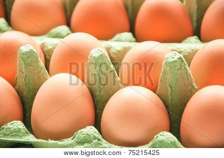 Eggs In Green Cartone