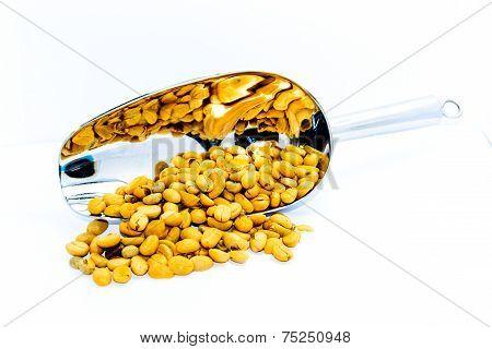 Raw Coffee Bean Before Roast Process
