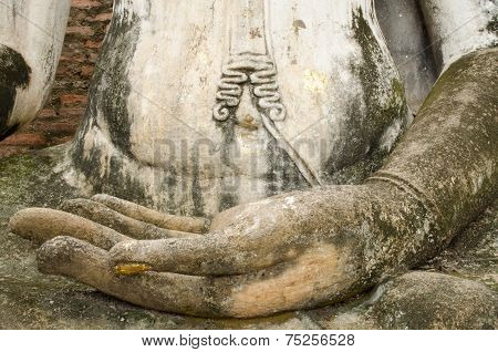 Hand Of Buddhism Image