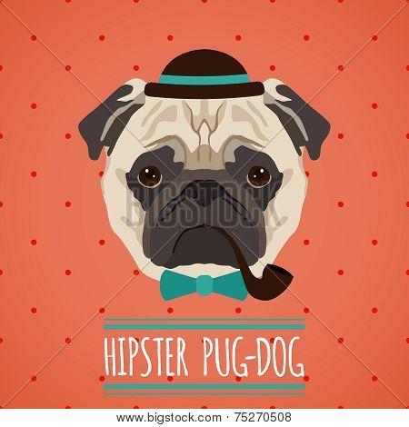 Hipster dog portrait