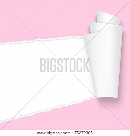 Ripped Open Paper Pink