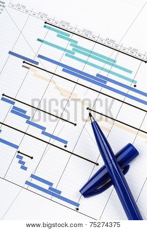 Planning Chart for Financial Project