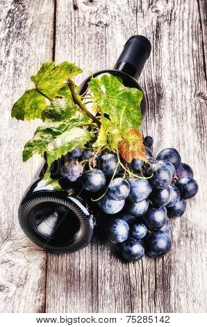 Bottle Of Red Wine With Fresh Grape And Grapevine