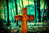 image of mystical  - Old and forgotten cross gravestone in dark mystical cemetery - JPG