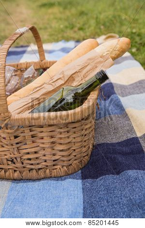 Picnic of wine and baguettes on a sunny day